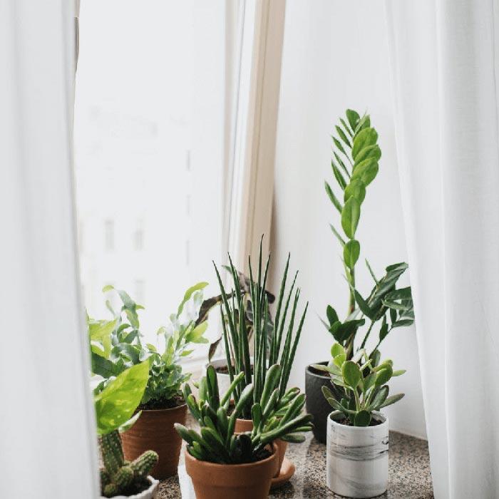 Come fare a mantenere fresca la vostra casa durante l'estate?