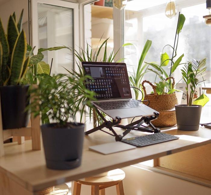 5 tips per un home office o come creare un ambiente di lavoro da casa piacevole e salutare